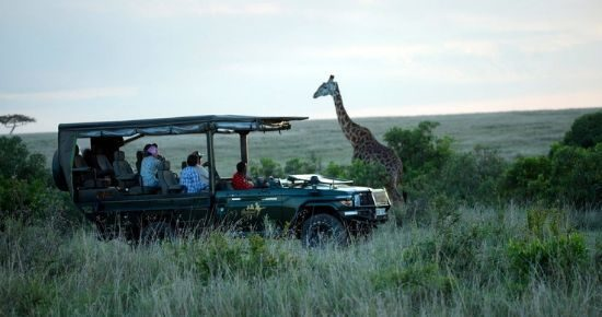 Ilkeliani-Camp-Masai-Mara.-Cover-1-1.jpg