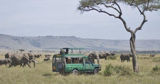 Mara-Serena-Safari-Lodge-Cover-2-2.jpg